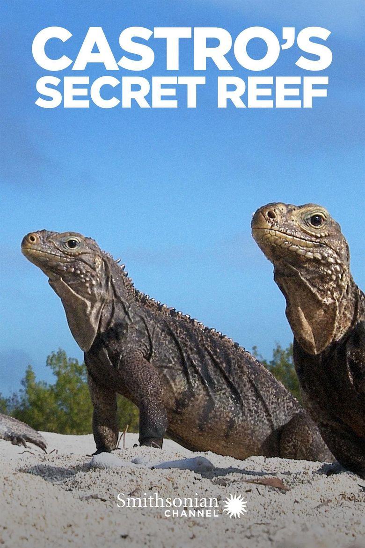 Castro's Secret Reef Poster