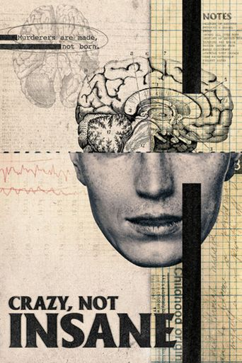 Crazy, Not Insane Poster