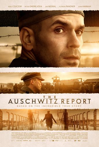 The Auschwitz Report Poster