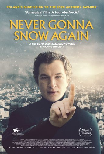 Never Gonna Snow Again Poster