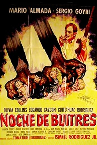 Night of the Vultures Poster