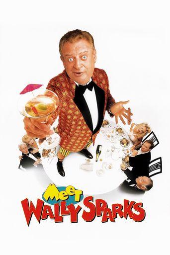 Watch Meet Wally Sparks