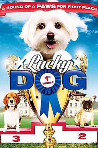 Lucky Dog Poster