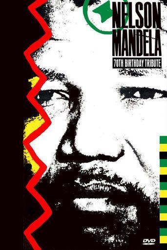 Nelson Mandela 70th Birthday Tribute Poster