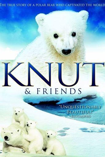 Knut & Friends Poster