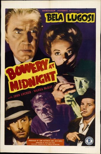 Bowery at Midnight Poster