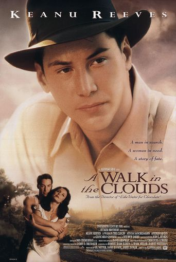 A Walk in the Clouds Poster