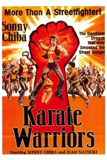 Karate Warriors Poster
