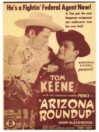 Arizona Round-Up Poster