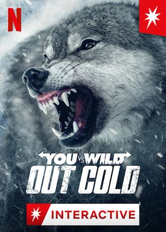 You vs. Wild: Out Cold Poster