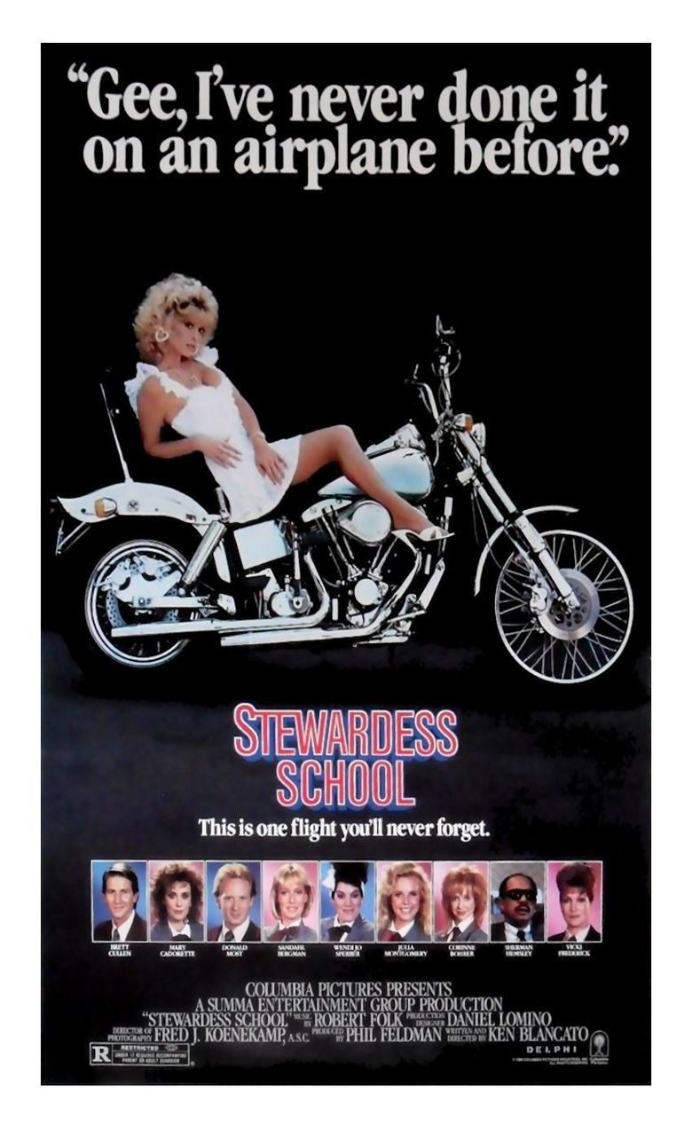 Stewardess School Poster