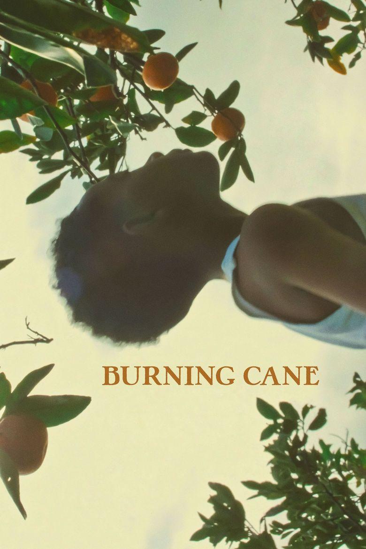 Burning Cane Poster