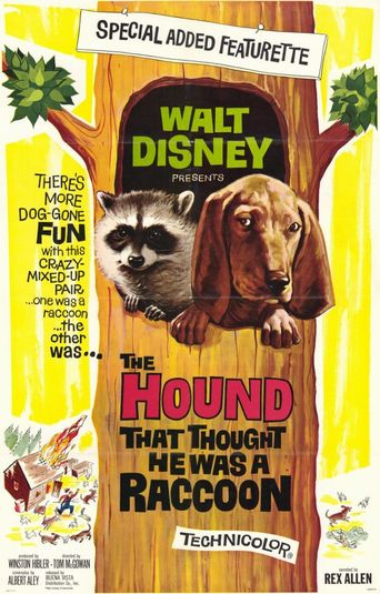 The Hound That Thought He Was a Raccoon Poster