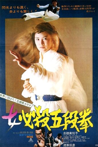 Sister Street Fighter: Fifth Level Fist Poster