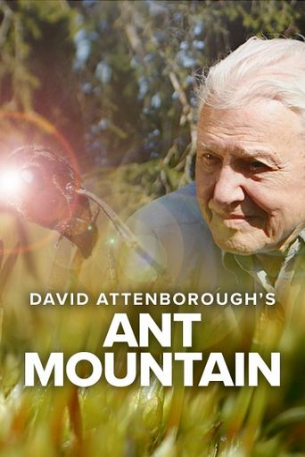 David Attenborough's Ant Mountain Poster