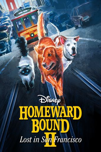 Watch Homeward Bound II: Lost in San Francisco