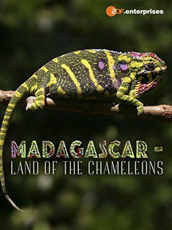 Madagascar: Land of the Chameleons Poster