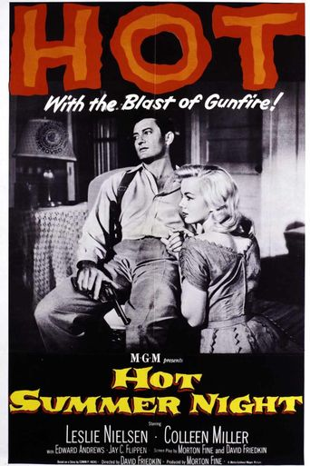Hot Summer Night Poster