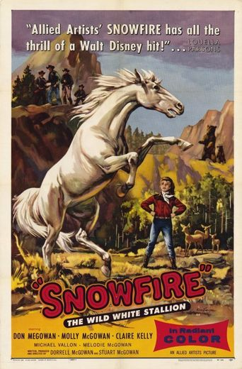 Snowfire Poster