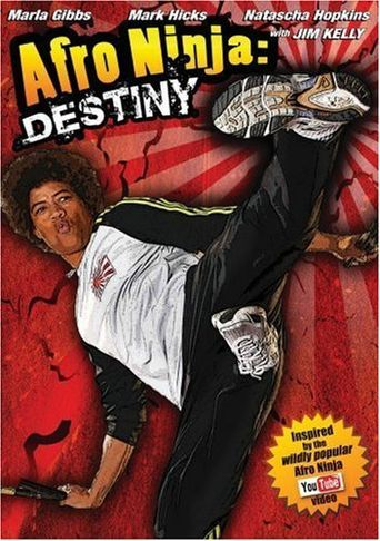 Afro Ninja Poster
