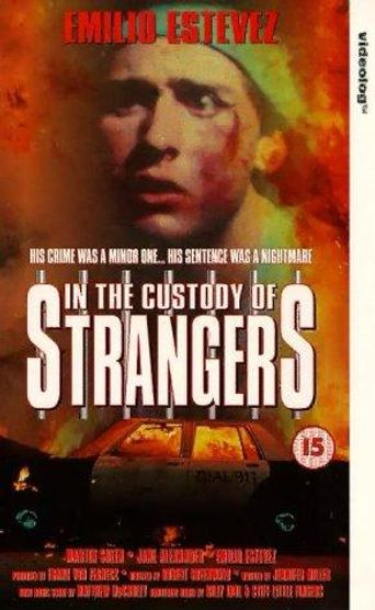 In the Custody of Strangers Poster
