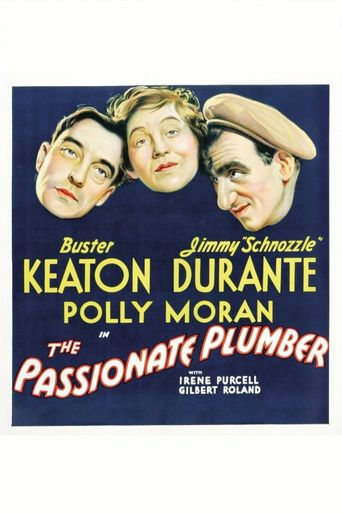 The Passionate Plumber Poster