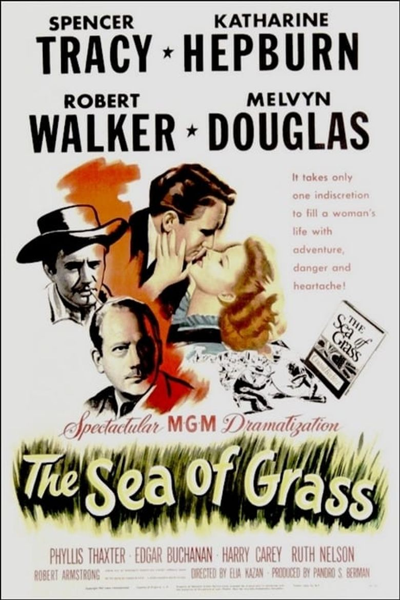 The Sea of Grass Poster