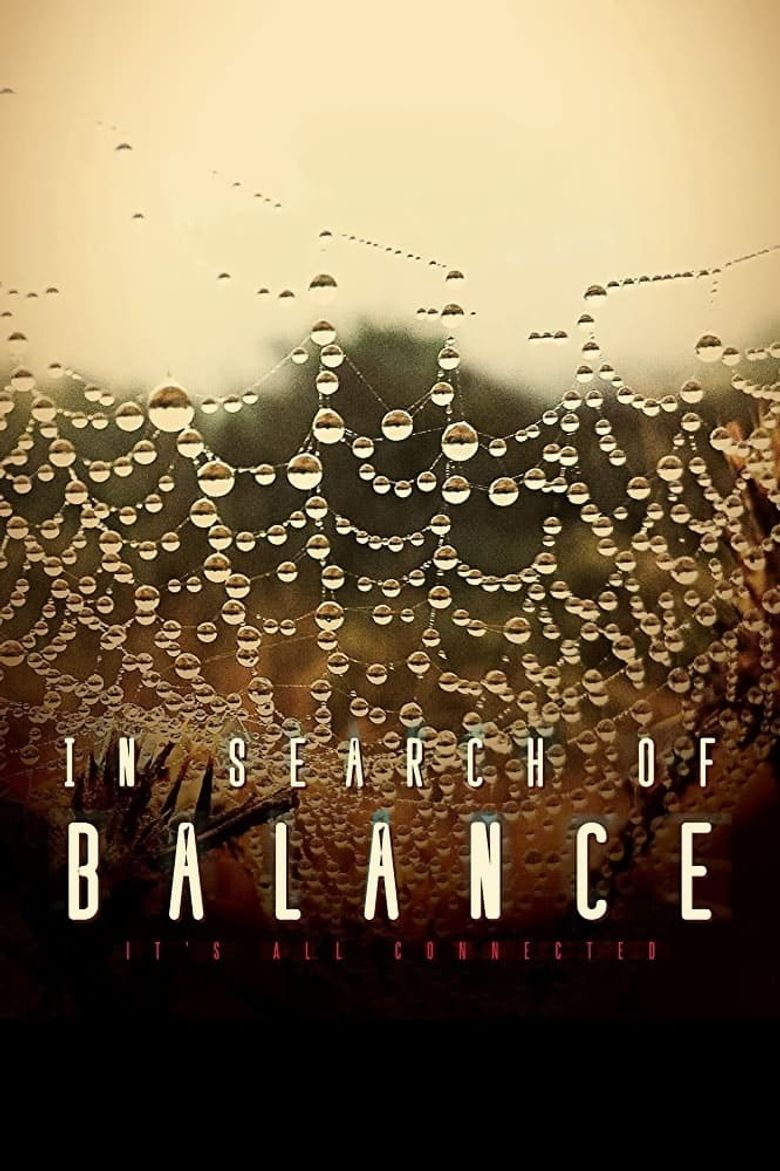 In Search of Balance Poster
