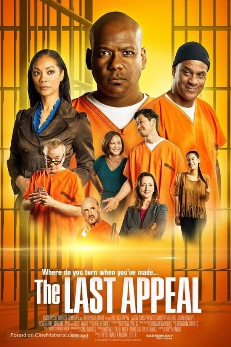 The Last Appeal Poster