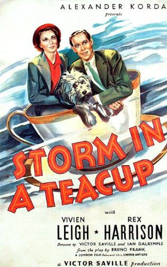 Watch Storm in a Teacup