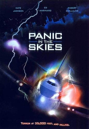 Panic in the Skies Poster