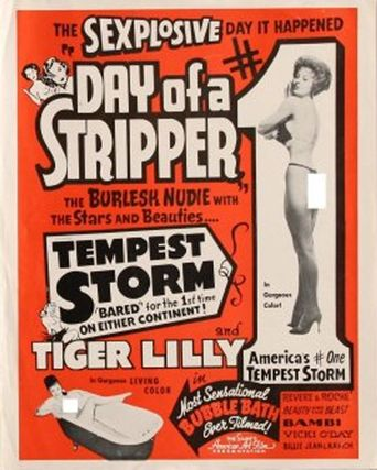 Day of a Stripper Poster