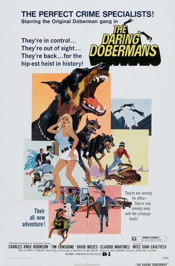 Watch The Daring Dobermans
