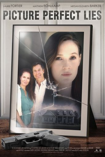 Picture Perfect Lies Poster