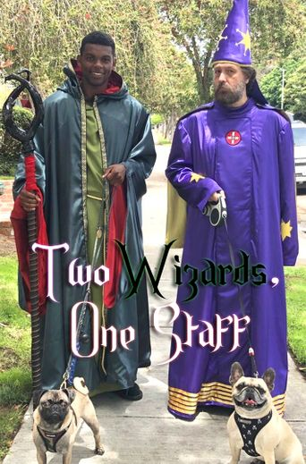 Two Wizards, One Staff Poster
