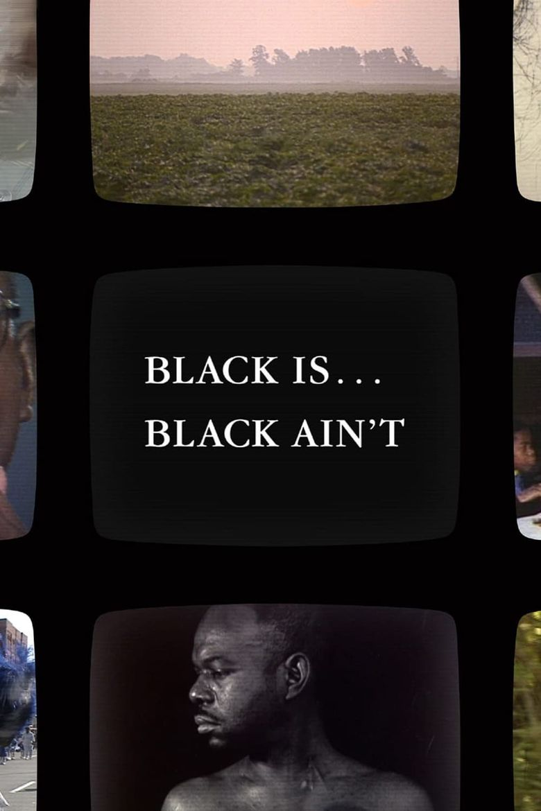 Black Is … Black Ain't Poster