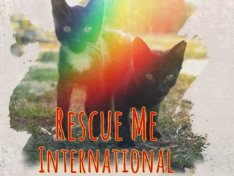 Rescue Me: International Poster