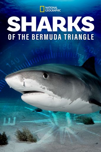 Sharks of the Bermuda Triangle Poster