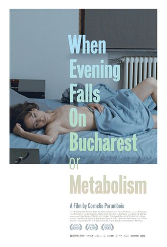 When Evening Falls on Bucharest or Metabolism Poster