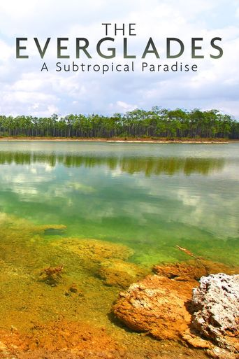 National Parks Exploration Series: The Everglades Poster