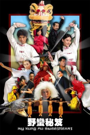 My Kung Fu Sweetheart Poster