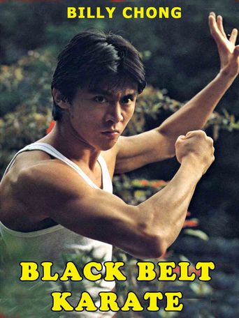 Black Belt Karate Poster