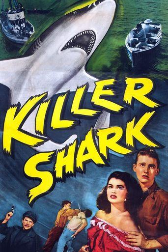 Killer Shark Poster
