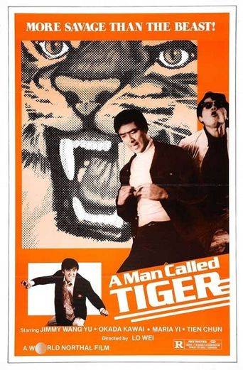 A Man Called Tiger Poster