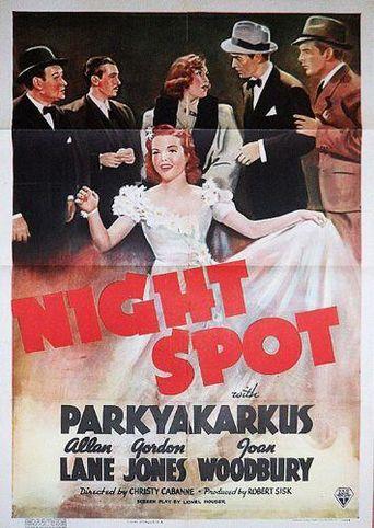 Night Spot Poster