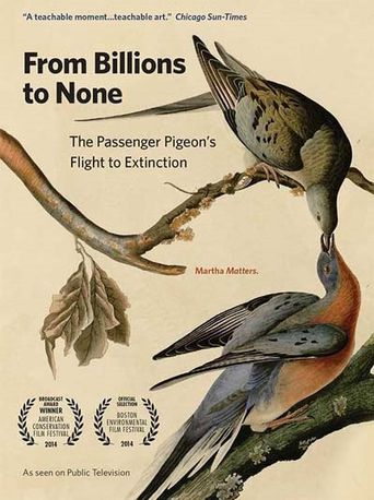 From Billions to None: The Passenger Pigeon's Flight to Extinction Poster