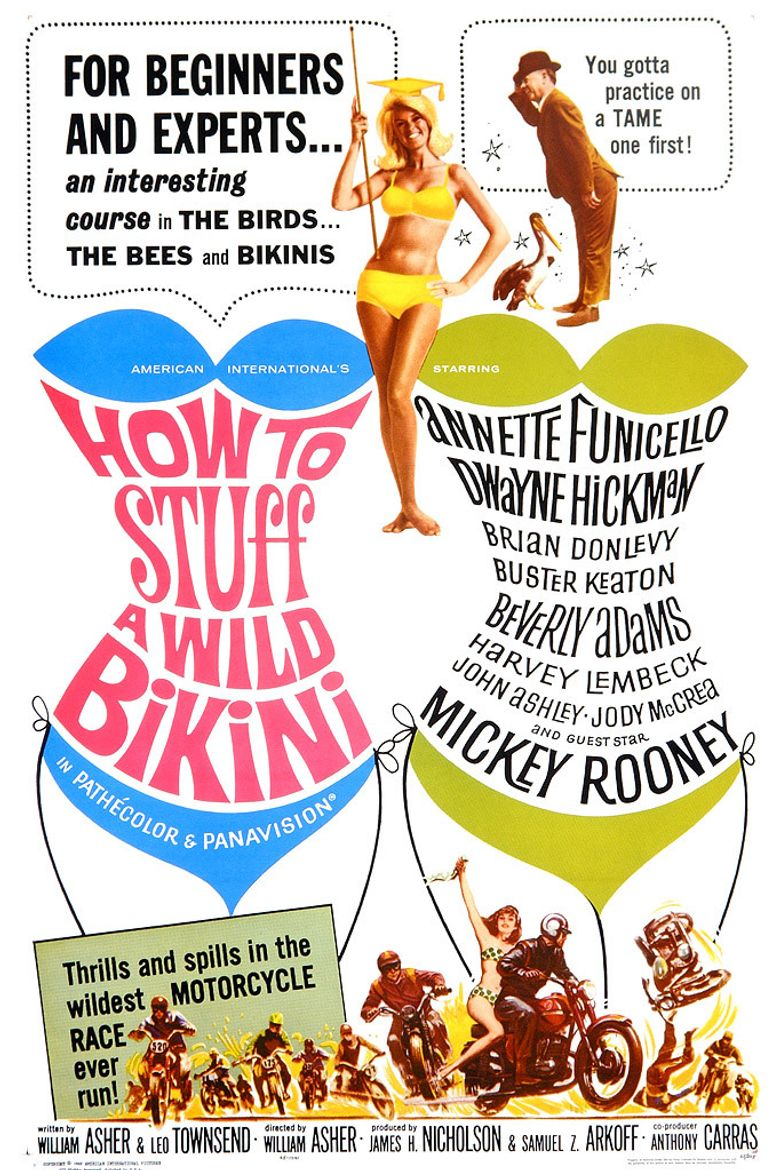 How to Stuff a Wild Bikini Poster