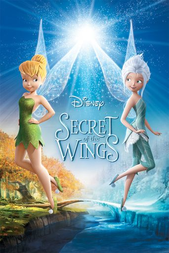 Watch Secret of the Wings