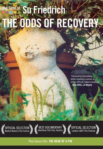 The Odds of Recovery Poster