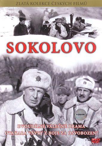Sokolovo Poster